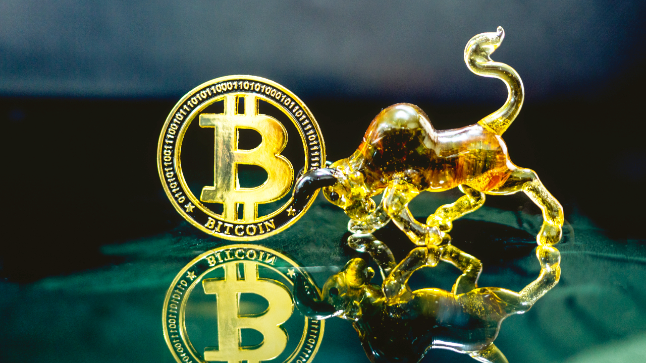 Microstrategy CEO Personally Owns $240 Million in Bitcoin — Company's BTC Profit Eclipses Other Earnings